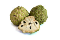 Sugar Apple Tree