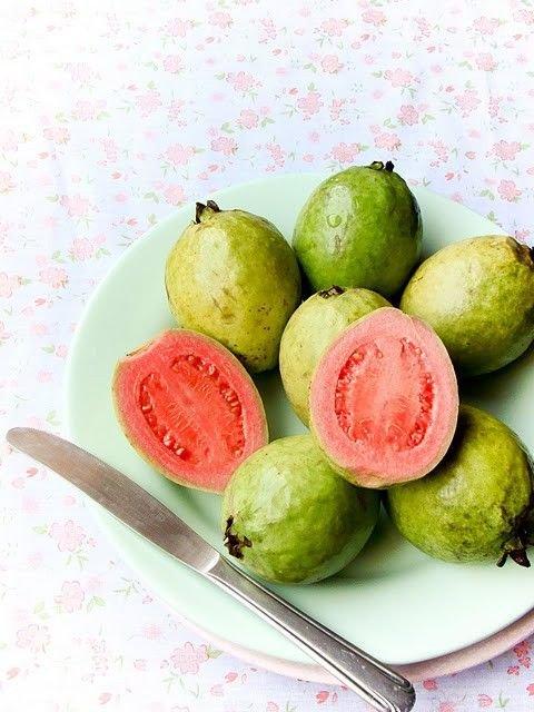 Guava Tree Pink Variety
