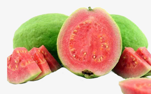 Guava Tree Red Variety