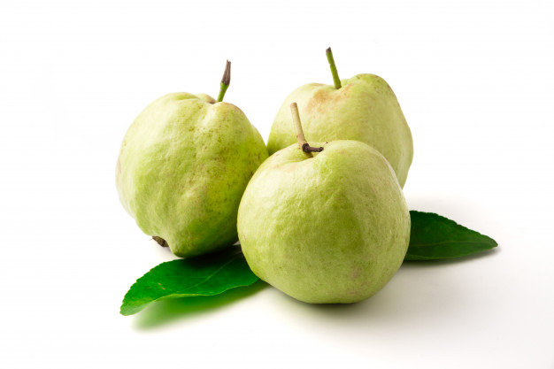 Guava Tree White Variety