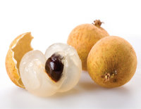 Longan Tree Diamond River Variety Air-Layered