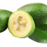 Pineapple Guava/Fieoja Tree