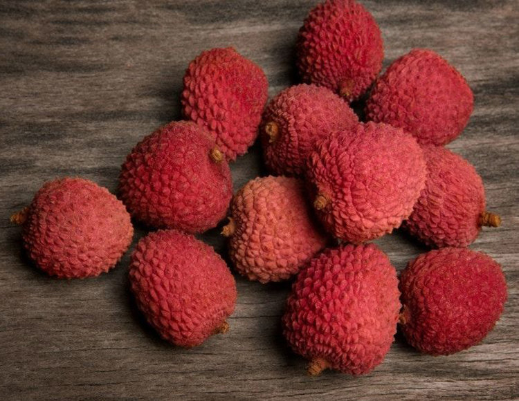 Lychee Tree Pictures