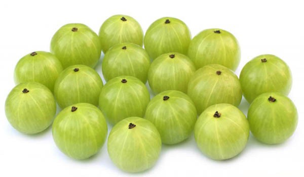 Gooseberries Pictures Fruit