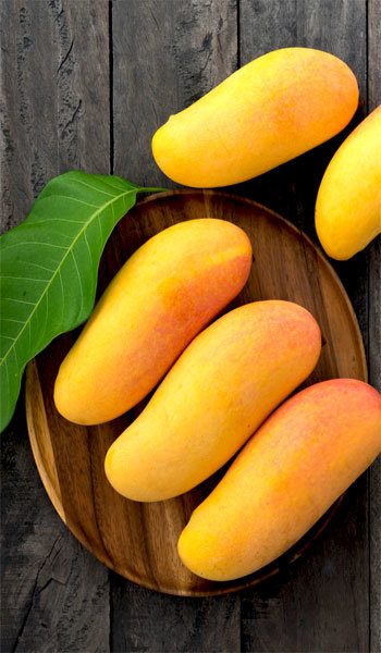 20th Anniversary Gifts For Husbands: Maha Chanook Mango Tree
