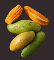 Mango Tree Okrung Variety Grafted